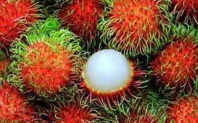 Kandungan Gizi Rambutan
