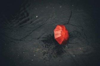 Bermimpi Tentang Payung