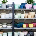 La diferencia entre macetas de terracota, cerámica y plástico, y por qué es importante para sus plantas