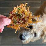 Deberías freír las patatas fritas con queso