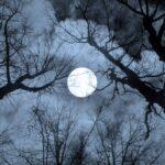 Cómo cada luna llena obtuvo su nombre (y cuándo verlas)