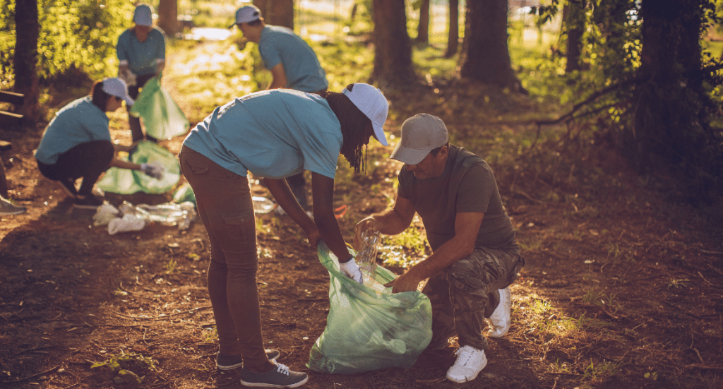 detoit volunteering outdoors