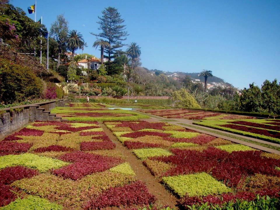 funchal jardin botanique