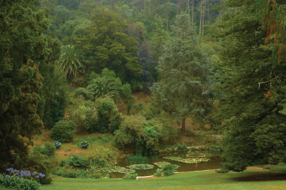 parque monserrate portugal