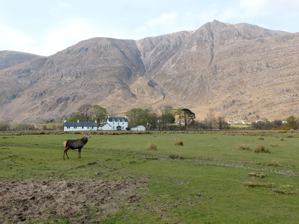 torridon highlands