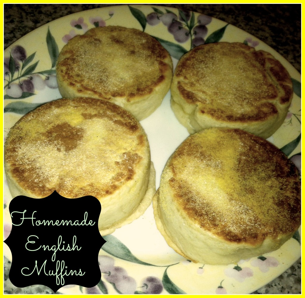 English Muffins - Detours in Life