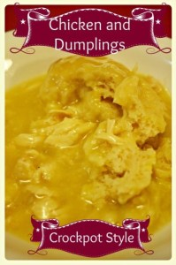 chickendumplings4