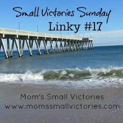 small-victories-sunday-17