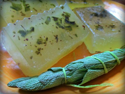 Tea tree eucalyptus 2
