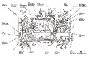 2007 Ford Focus Engine Hose Diagram | Wiring Diagram Database