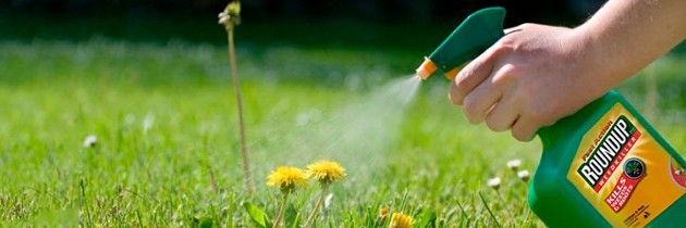 10 Things You Need to Know about Glyphosate