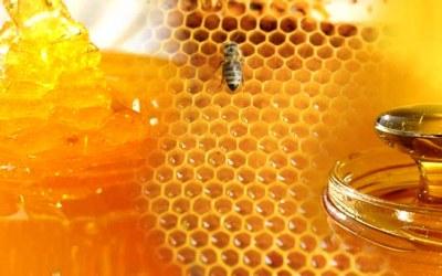 Roundup Found in 1/3 of Kauai Honey on Store Shelves