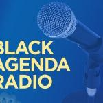 Detroit Financial Dictator Uses Water as Weapon - Black Agenda Radio