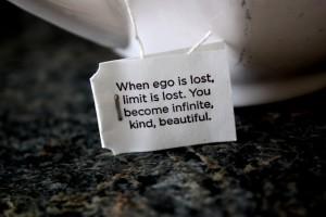 ego-300x200