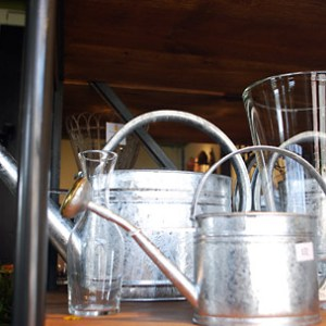 Various-Sized-Galvanized-Watering-Cans.jpg