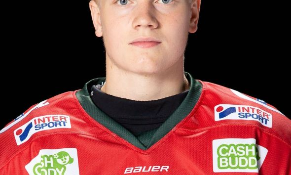 Theodore Niederbach was drafted as a center, but has been playing wing in the Swedish League.