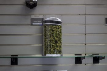 A JAR CONTAINING CANNABIS. PHOTO JOHN BOZICK