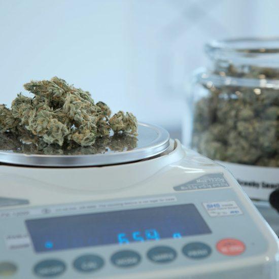 marijuana // PHOTO BY ADD WEED ON UNSPLASH