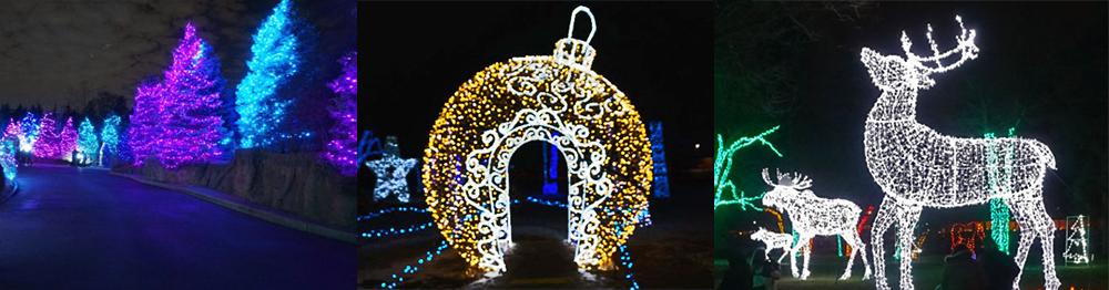 Zoo Light Show Detroit