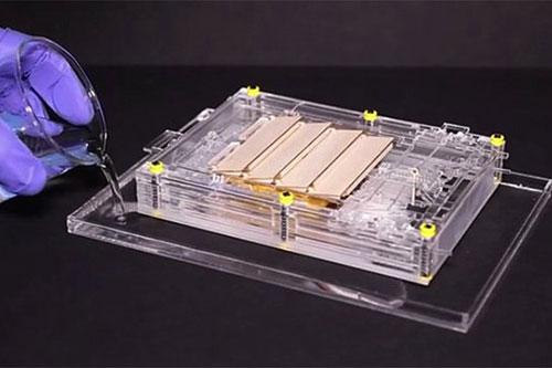 inventan-un-revolucionario-motor-que-funciona-con-vapor-de-agua