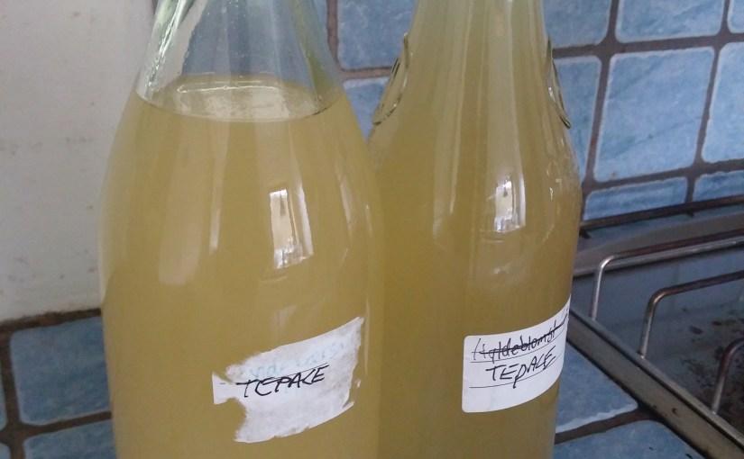 Tepache – lav alkohol af din ananas