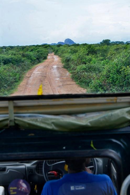 safari Yala nasjonalpark Sri Lanka