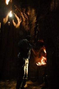 sine saloum baobab