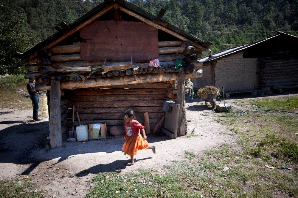 huset til indianere i Copper Canyon, Mexico