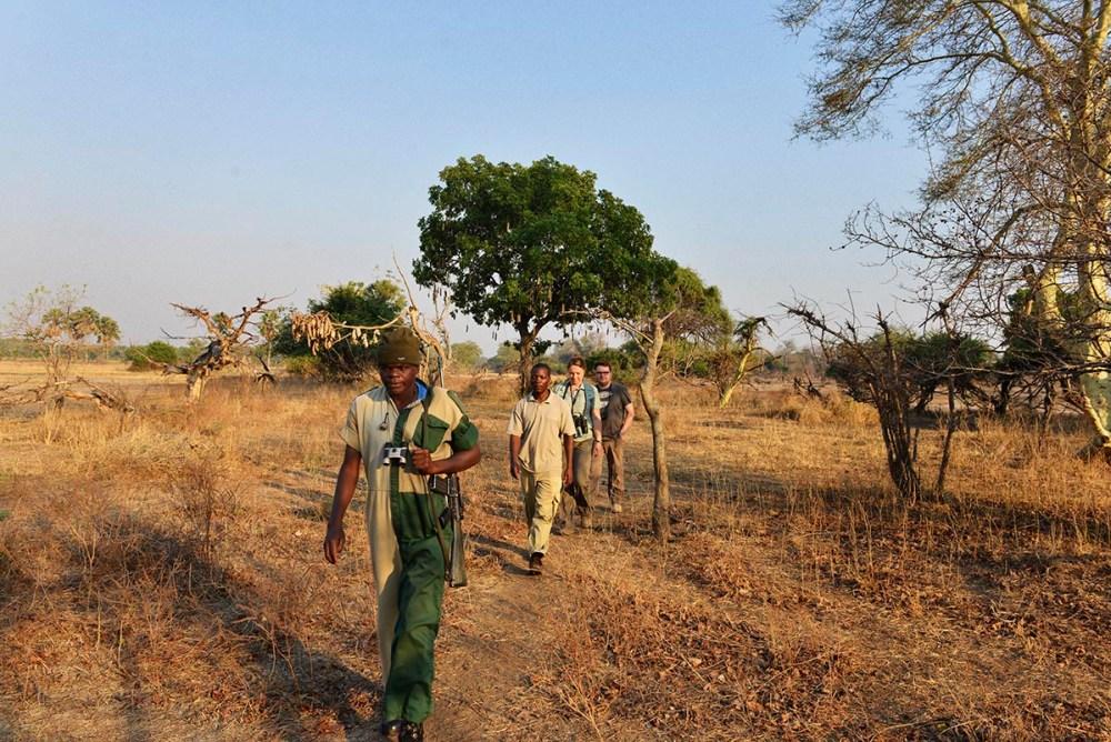 walking safari i Malawi