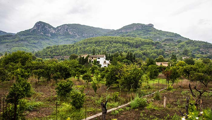 Gård i Sóller-dalen på Mallorca