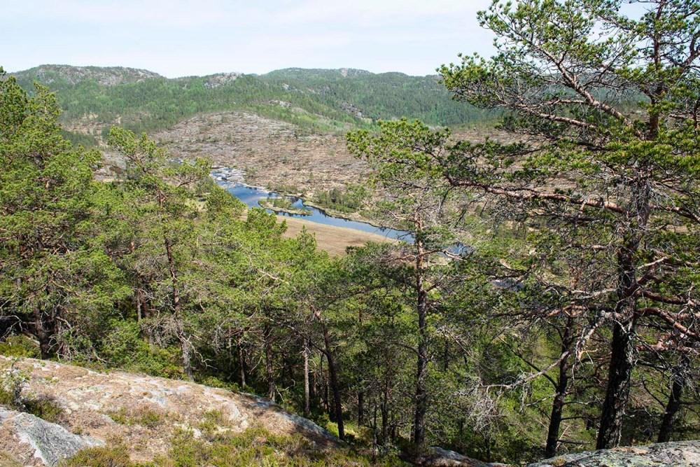 Utsikt fra Fosseknuten i Kvinesdal