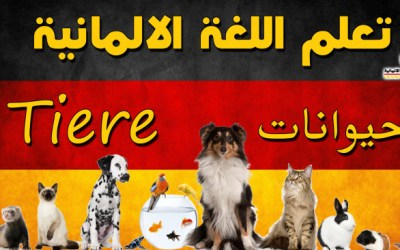 الحيوانات في اللغة الالمانية