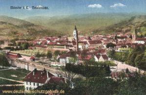 Münster im Elsass, Totalansicht