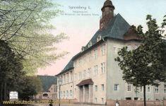 Spremberg, Realgymnasium mit Mittelpunkt vom Deutschen Reich