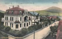 Zwickau in Böhmen, Villenpartie in der Schillerstraße, Grüner Berg