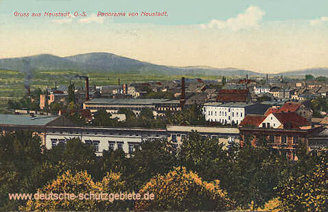 Neustadt, O.-S., Panorama von Neustadt