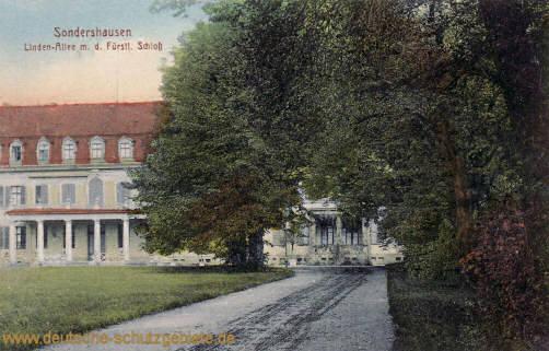 Sondershausen, Lindenallee mit dem Fürstlichen Schloss
