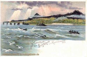 Kamerun-Victoria am Kamerunberg