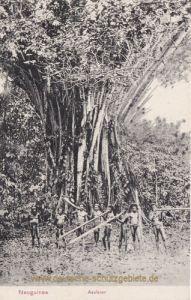 Neuguinea, Asafeier