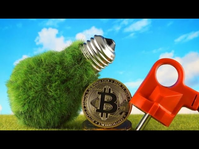 How Green Is Bitcoin?   Expert Interview   How Cryptos Become Sustainable   Blockchain Power Waste