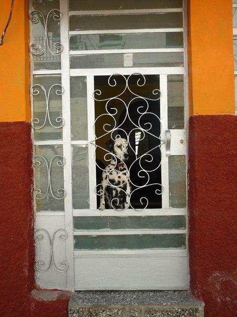 Vedado La havane Cuba