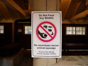 Amende pour nourrir des animaux à Jasper