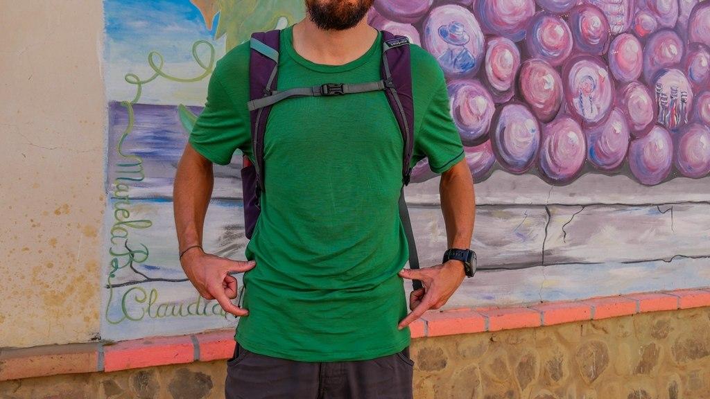 Patagonia Black Hole Backpack 25L : Pas de sangle abdominale