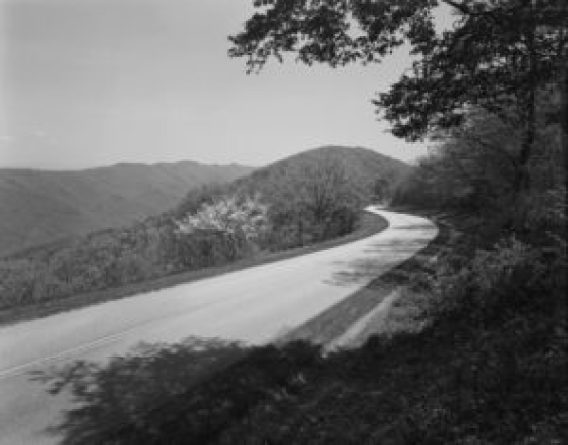view showing the curvilinear alignment of the parkway