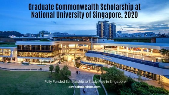 Graduate Commonwealth Scholarship at National University of Singapore, 2020