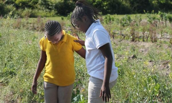 girls-gardening-by-bowens-650.jpg