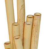 English Horn Tube Cane