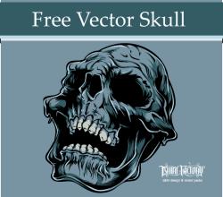Decomposing Skull Vector