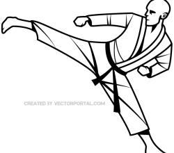 Karate Fighter Vector Image