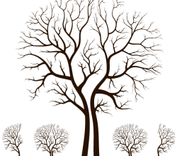 Leafless Autumn Tree Design Free Vector